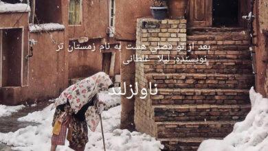 تصویر از دانلود رمان بعد از تو فصلی هست به نام زمستان تر pdf از لیلا غلطانی با لینک مستقیم