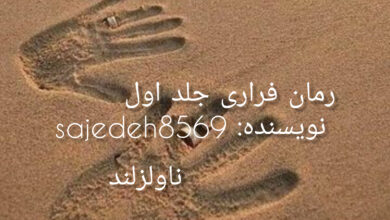 تصویر از دانلود رمان فراری جلد اول pdf از sajedeh8569 با لینک مستقیم