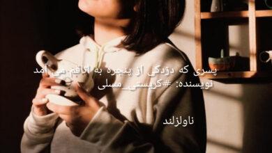 تصویر از دانلود رمان پسری که دزدکی از پنجره به اتاقم می آمد pdf از کریستی_مسلی با لینک مستقیم