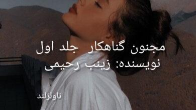 تصویر از دانلود رمان مجنون گناهکار PDF از زینب رحیمی با لینک مستقیم