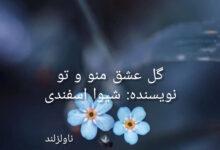 تصویر از دانلود رمان گل عشق منو و تو pdf از شیوا اسفندی با لینک مستقیم