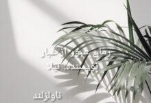 تصویر از دانلود رمان عبور از غبار pdf از نیلا با لینک مستقیم